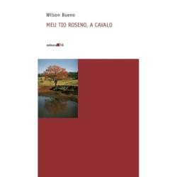 Fake Brazil - Fiuza,...